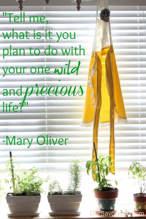 oursavorylife-mary-olive-quote
