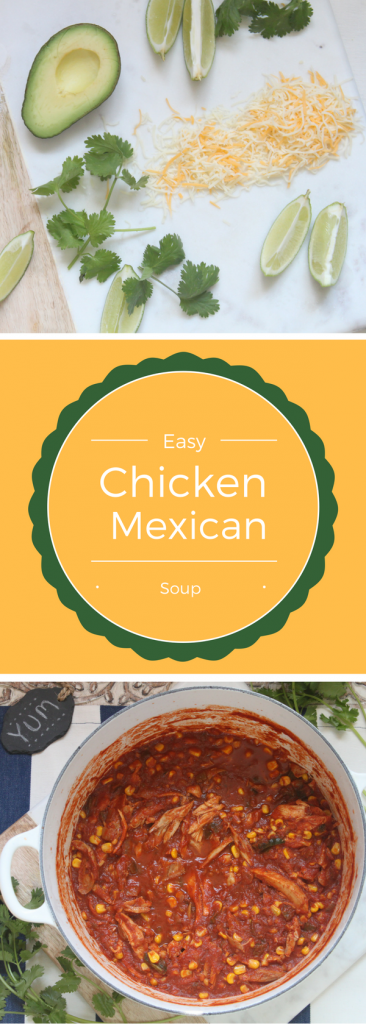 Easy, flavorful chicken mexican soup!