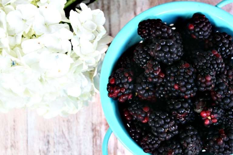 blackberries and flowers around my table aug. 28